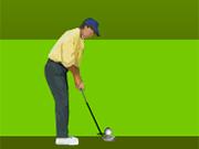 3Dチャンピオンシップゴルフ
