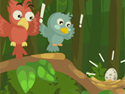 Bird Jungle Rescue