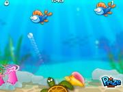 Play Bubafish