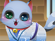 Play Cute Kitten Creator