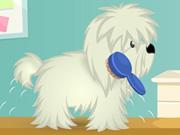 Cutie Pet Care