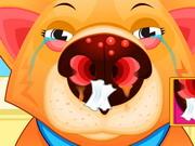 ドクターペット鼻
