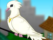 鳩メーカー