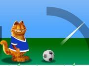 ガーフィールドサッカー