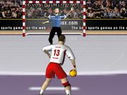 ハンドボールワールドカップ2015