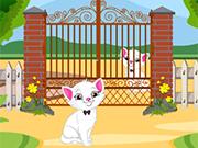 Play Kitten Escape From Garden