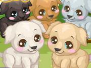 Play Labrador Care
