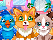 Play Learning Pets Doctor