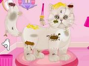 Play Persian Cat Princess Spa Salon