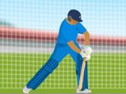 練習クリケット