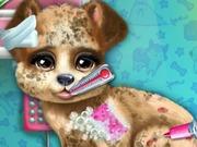 子犬救助獣医