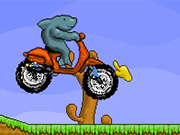 Play Shark Moto Mobil