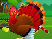 感謝祭トルコのグルーミング